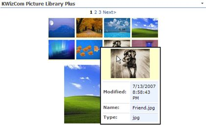 picture library 3.jpg