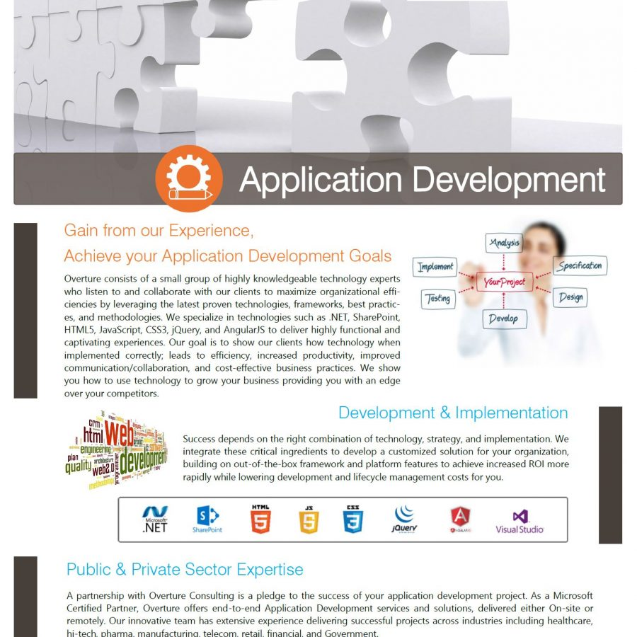 Custom-Application-Development-Services.JPG